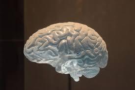 Aneurisma Cerebral Cirugía Robótica